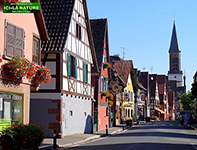 Alsace walking tours