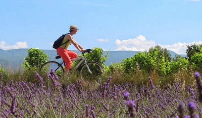 CYCLING TOURS IN FRANCE, SPAIN, PORTUGAL, ITALY